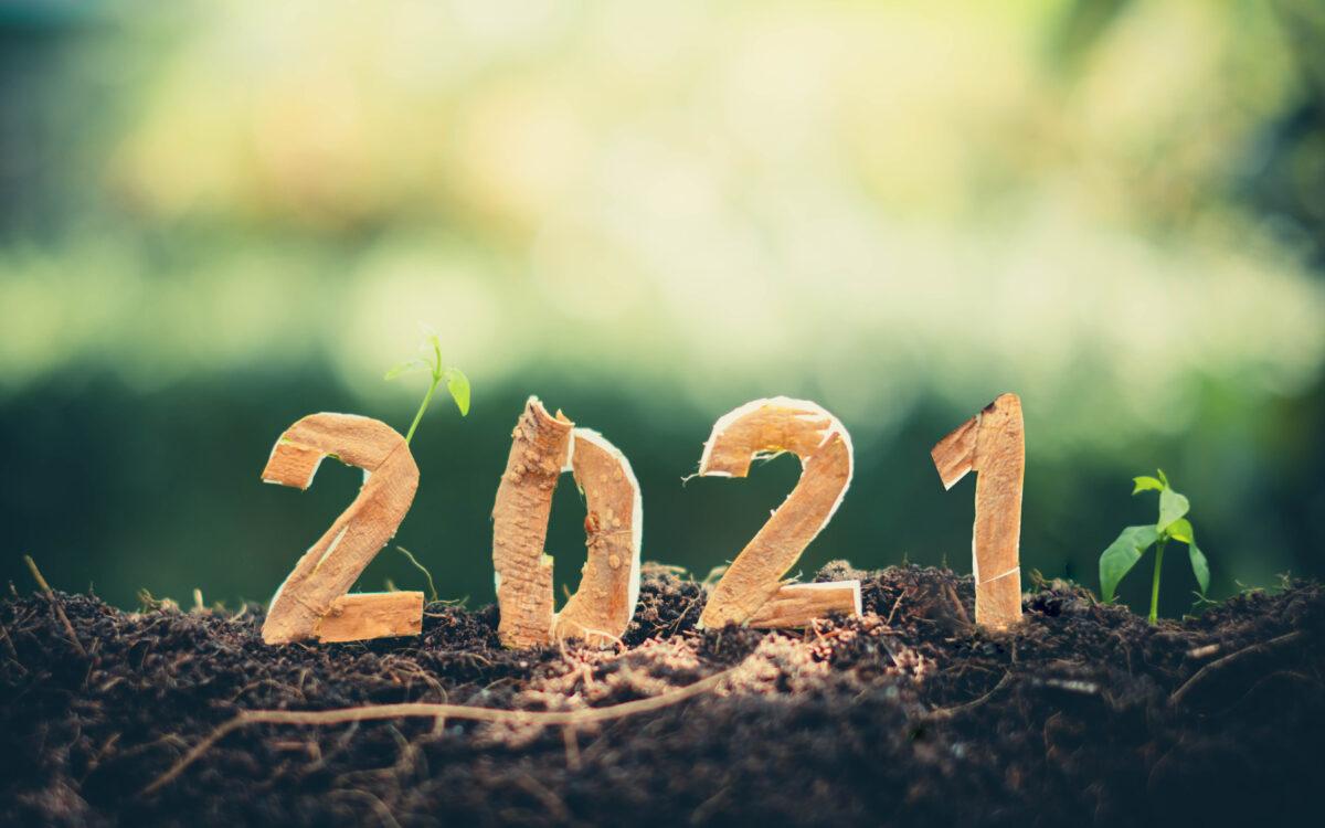 Planera ett hållbart event